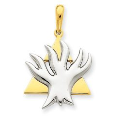 Judaica-Jewelry-14K-Yellow-White-Gold-Two-Tone-Star-of-David-Tree-of-Life-Charm-Pendant-B00K2M3LRU